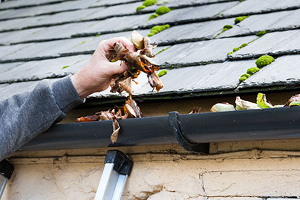cleaning full gutters alcoil